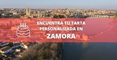 vista ciudad zamora
